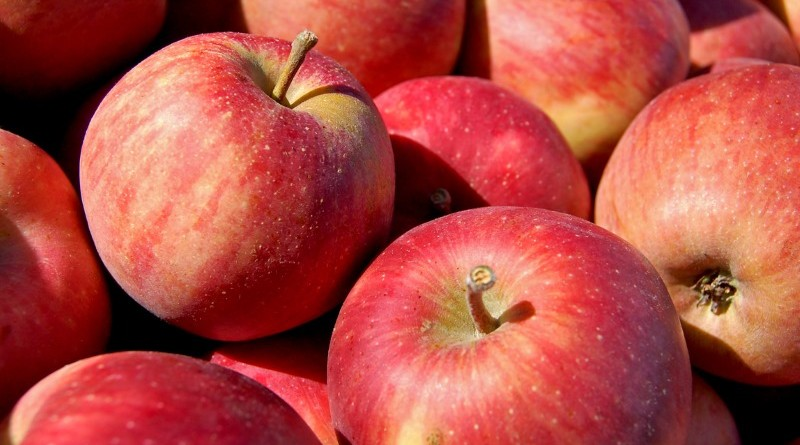 Photo of red apples