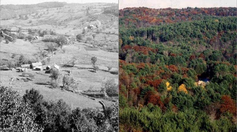 Photo of Swift River Valley in Massachusetts, barren in 1880s and forested in 2010
